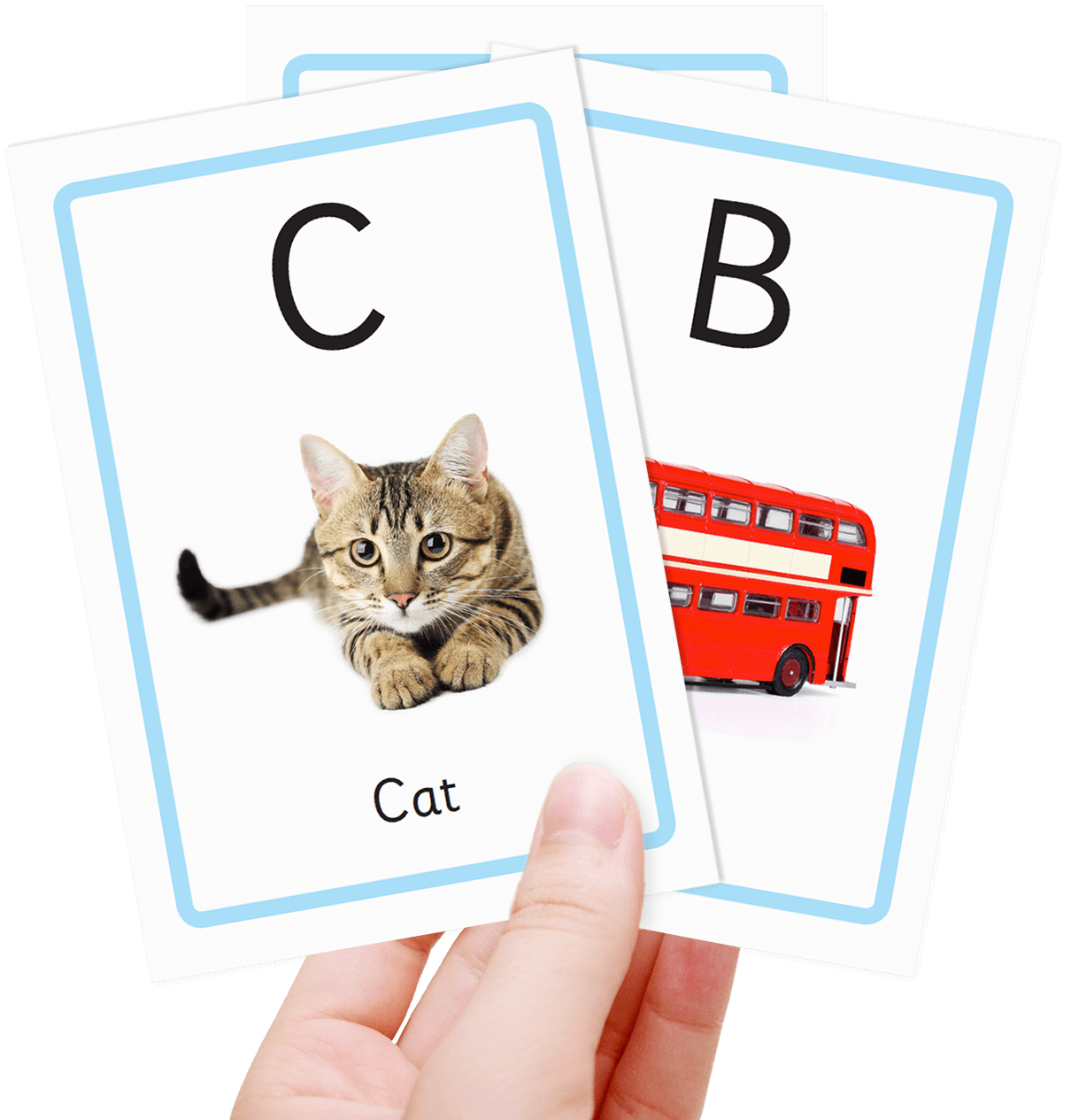It is a graphic of Massif Printable Toddler Flash Cards