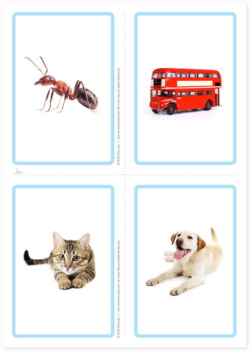 Free picture flashcards